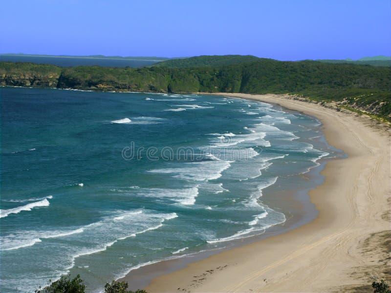 Parque nacional de Booti Booti - Austrália fotografia de stock royalty free
