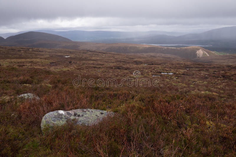Parque nacional de Cairngorms, área deserta fotografia de stock