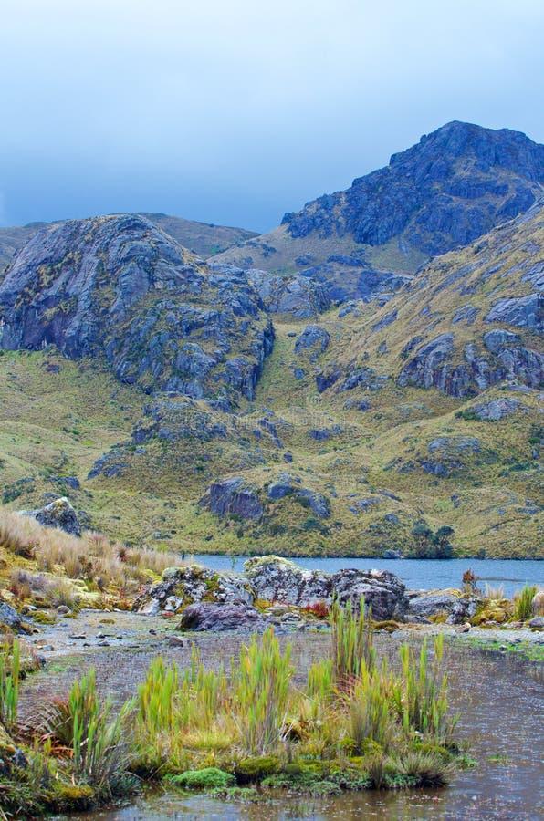 Parque nacional de Cajas foto de stock royalty free