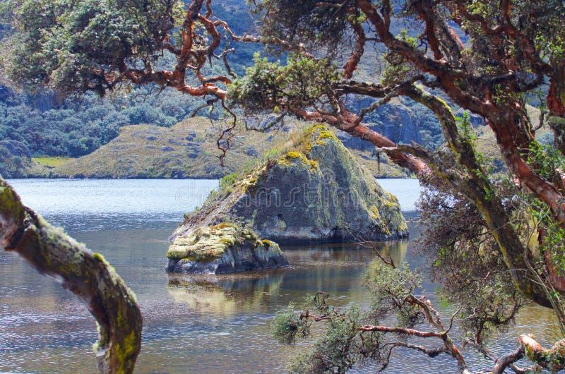 Parque nacional de Cajas imagem de stock