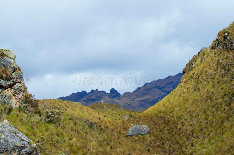 Parque nacional de Cajas foto de stock