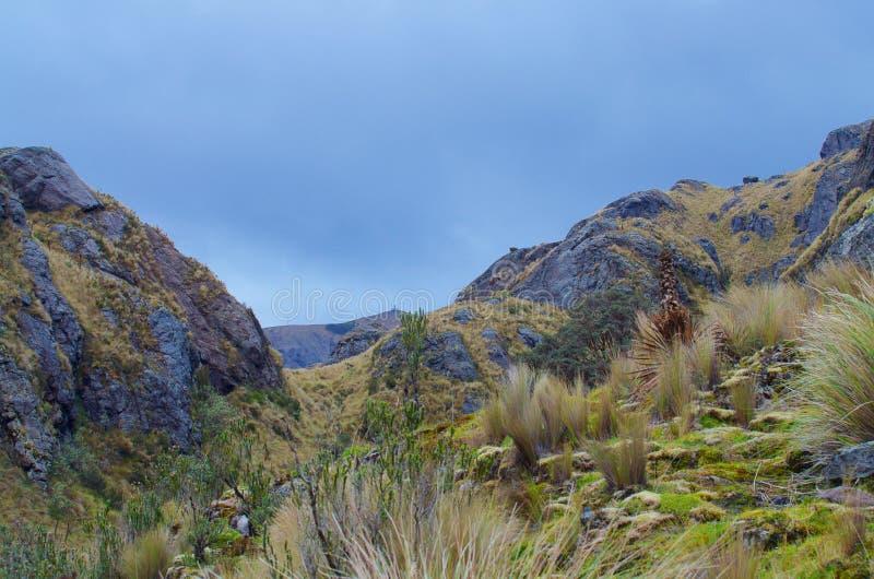 Parque nacional de Cajas fotografia de stock