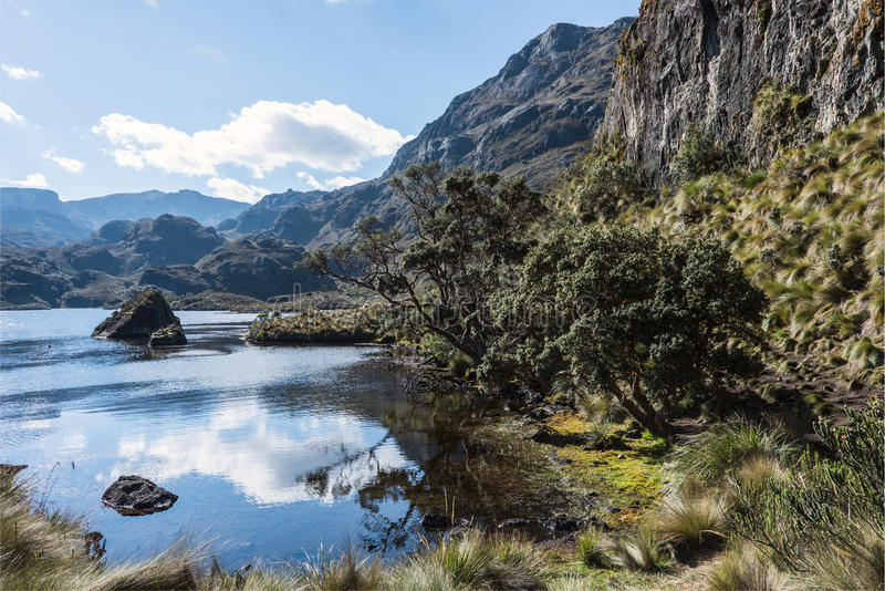Parque nacional de Cajas, montanhas andinas, Equador imagem de stock royalty free