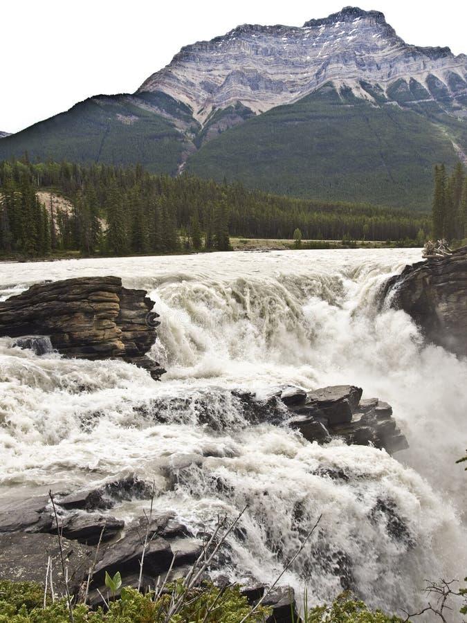 Parque nacional de Canadá banff foto de stock