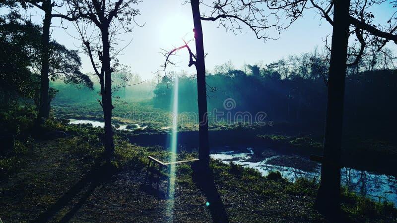 Parque nacional de Chitwan fotografía de archivo