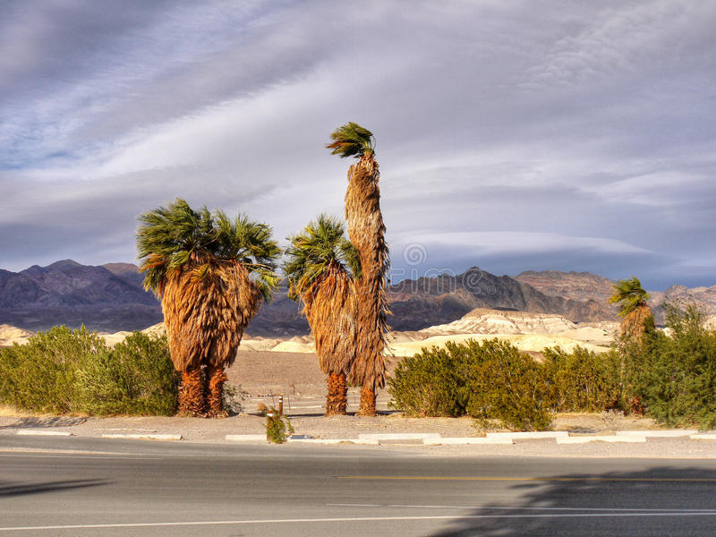 Parque nacional de Death Valley, Califórnia imagem de stock