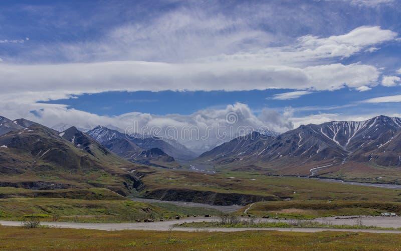 Parque nacional de Denali, Alaska los E fotos de archivo