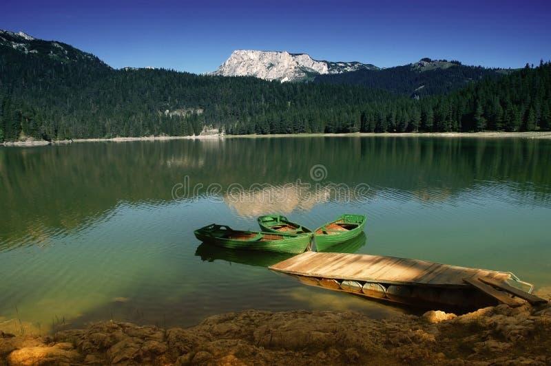 Parque nacional de Durmitor, Montenegro,   imagem de stock