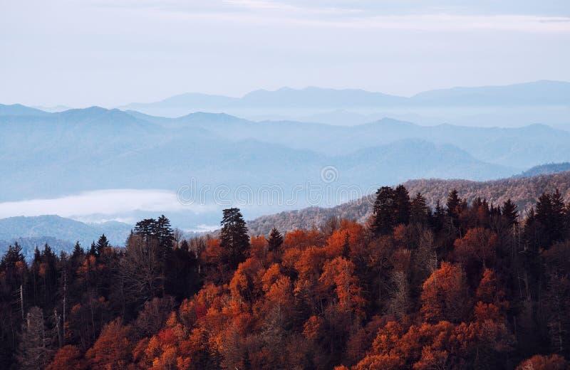 Parque nacional de Great Smoky Mountains foto de archivo