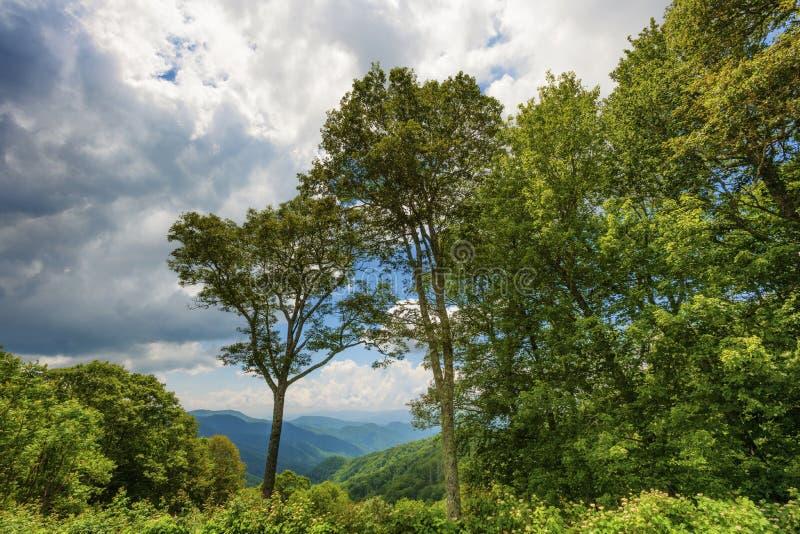 Parque nacional de Great Smoky Mountains en verano imágenes de archivo libres de regalías