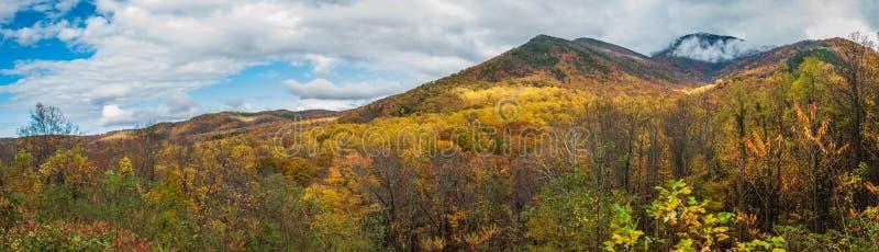 Parque nacional de Great Smoky Mountains na queda Autumn Season fotografia de stock royalty free