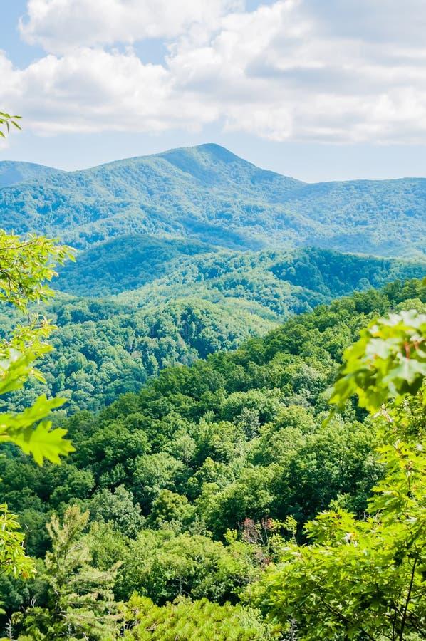 Parque nacional de Great Smoky Mountains perto de Gatlinburg, Tennessee imagens de stock royalty free