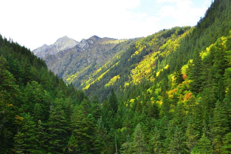 Parque nacional de Jiuzhaigou situado en el norte de la provincia de Sichuan en la región al sudoeste de China imagen de archivo