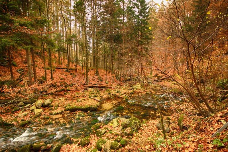 Parque nacional de Karkonoski, Szklarska Poreba, Polonia fotos de archivo