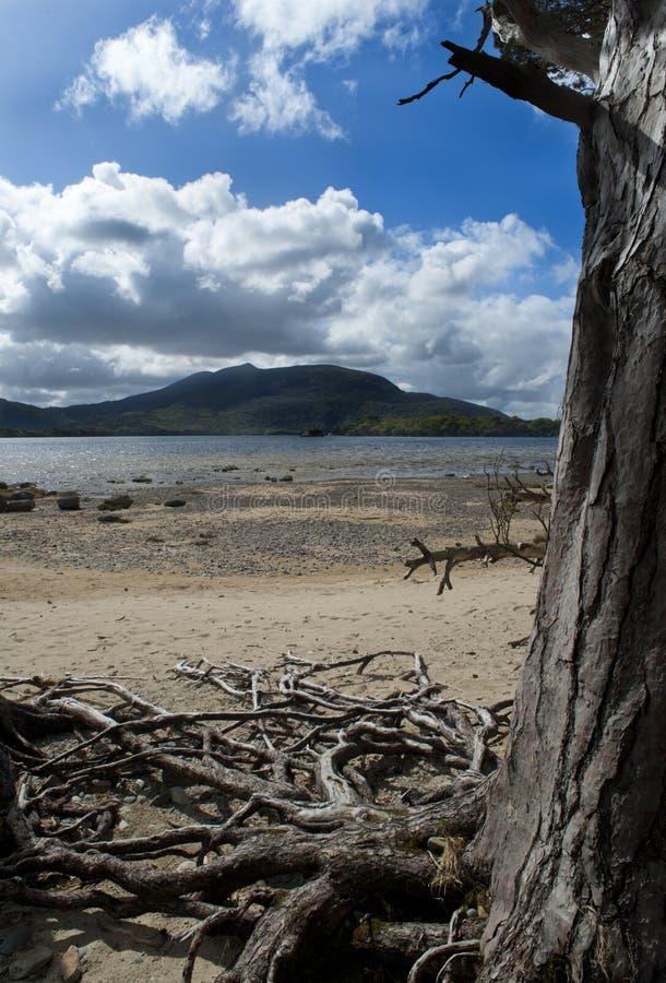 Parque Nacional De Killarney Imagen de archivo