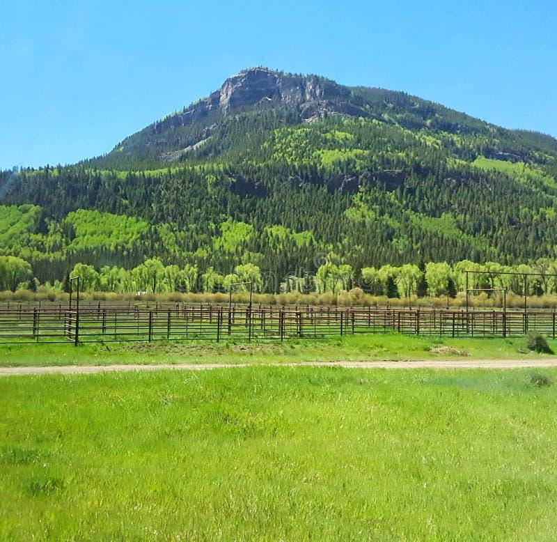 Parque nacional de la monta?a rocosa imagen de archivo