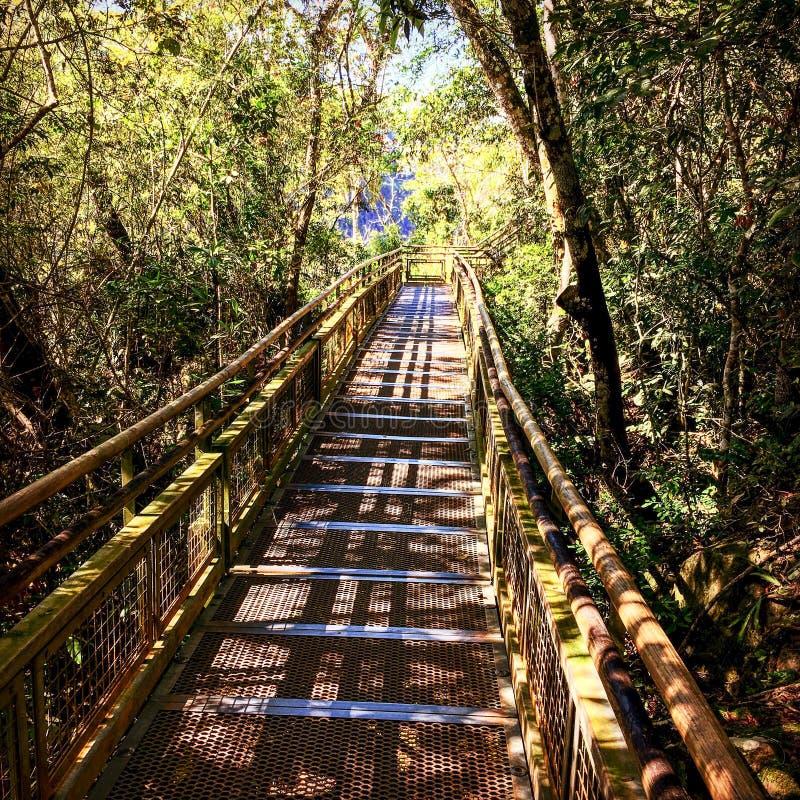 Parque nacional de las cascadas de Iguazu fotos de archivo libres de regalías