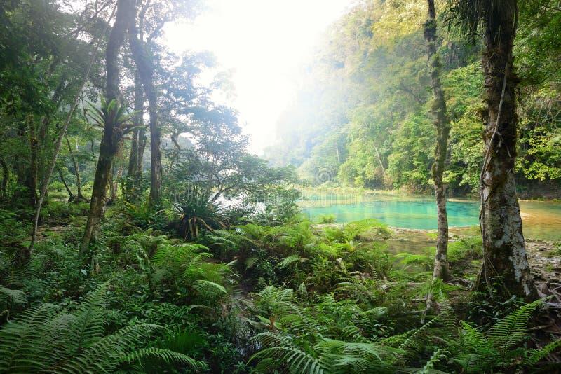 Parque nacional de las cascadas en Guatemala Semuc Champey en la puesta del sol. fotografía de archivo