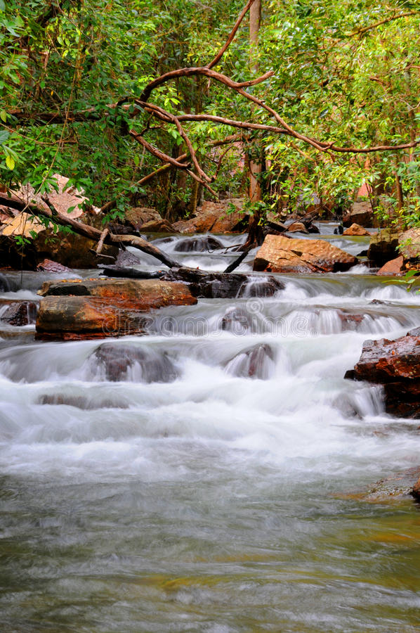 Parque nacional de Litchfield foto de stock royalty free