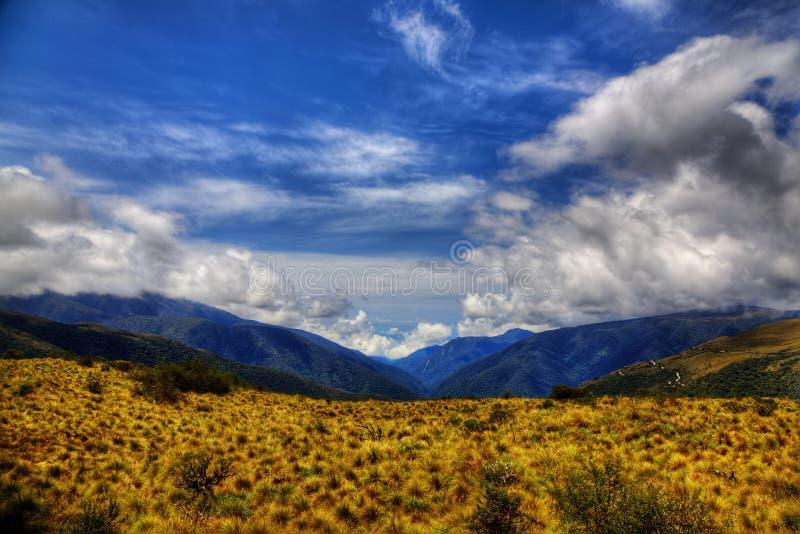 Parque nacional de Manu imágenes de archivo libres de regalías