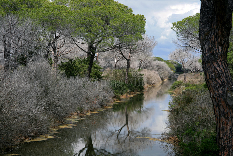 Parque nacional de Maremma fotografía de archivo libre de regalías