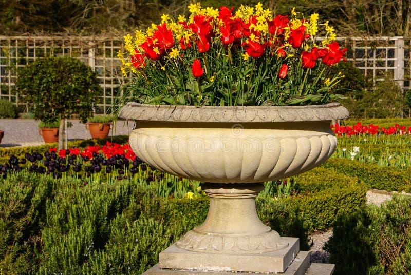 Parque nacional de Muckross Killarney de los jardines, Irlanda imagen de archivo