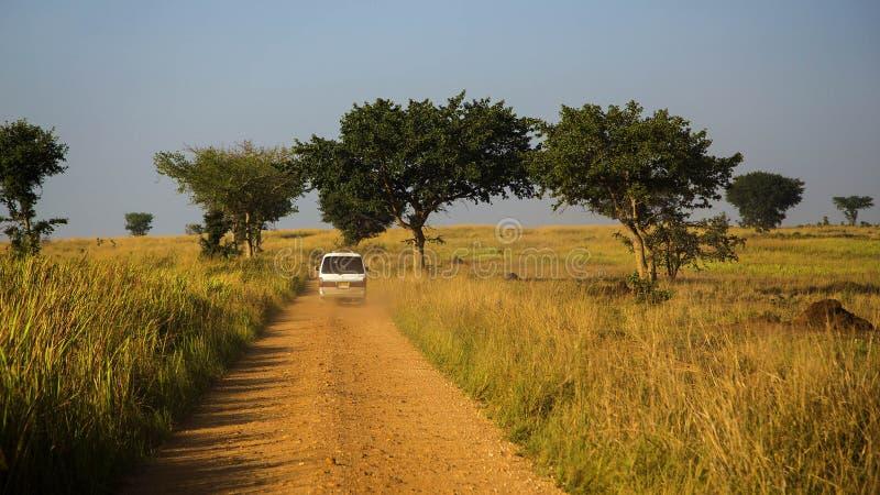 Parque nacional de Murchison Falls imagem de stock
