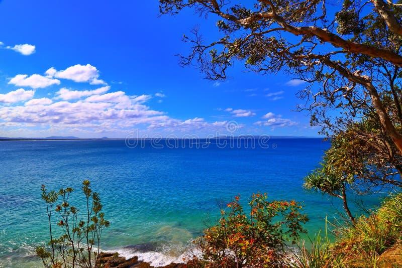 Parque nacional de Noosa, Australia imágenes de archivo libres de regalías