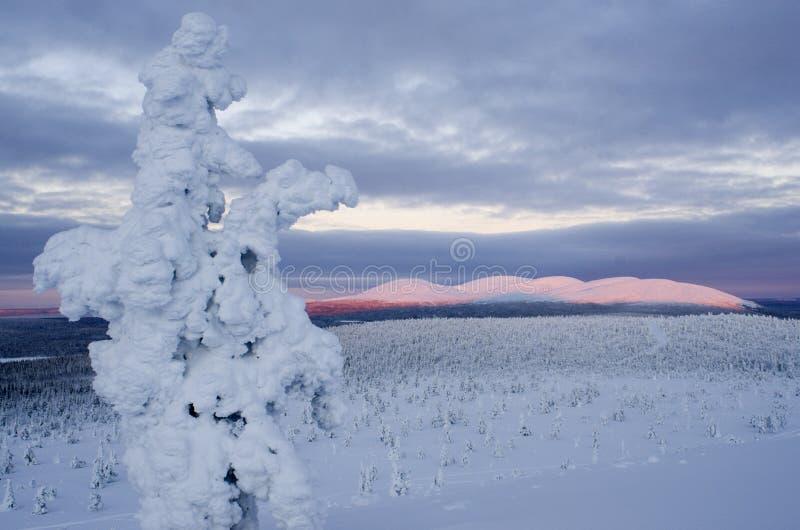 Parque nacional de Pallas, Finlandia