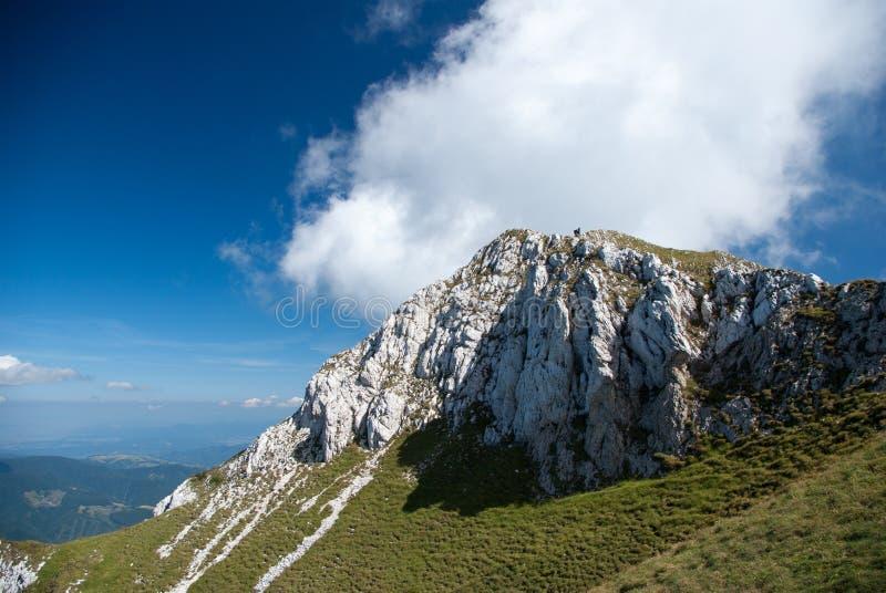 Parque nacional de Piatra Craiului, montañas de Cárpatos, Rumania foto de archivo