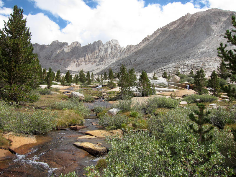 Parque nacional de secoya, California, foto de archivo libre de regalías