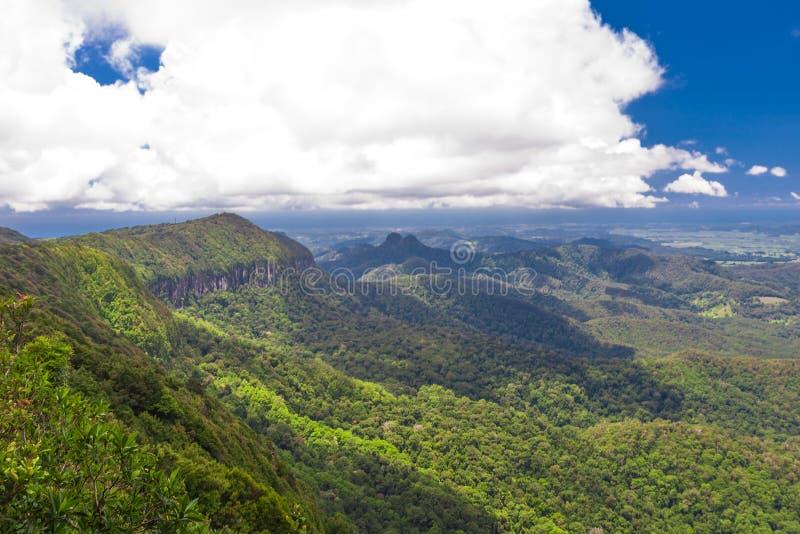 Parque nacional de Springbrook, Austrália fotos de stock