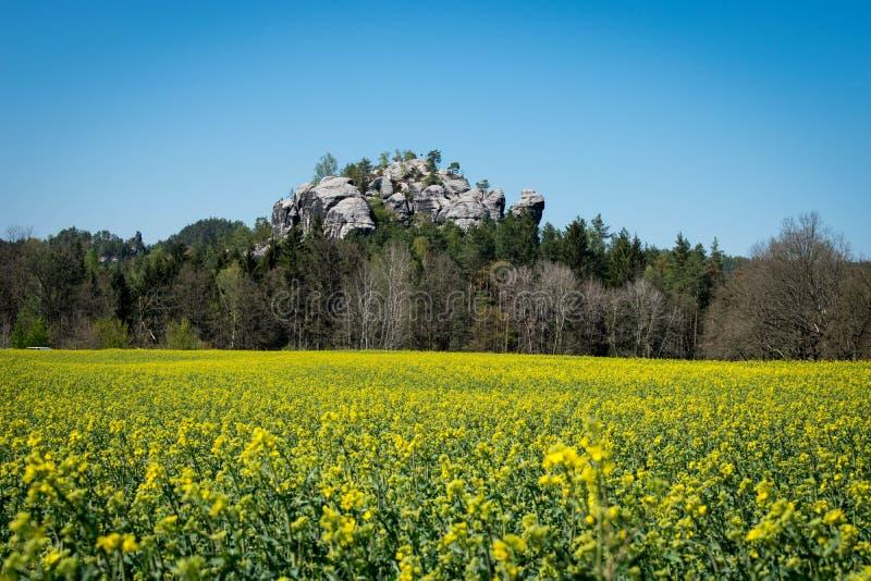 Parque nacional de Su??a sax?o em Alemanha oriental, ao sudeste de Dresden fotografia de stock royalty free