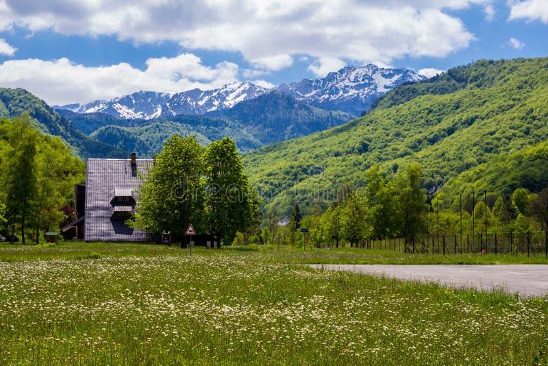 Parque nacional de Sutjeska em Bósnia e em Herzegovina fotos de stock royalty free