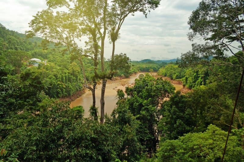 Parque nacional de Taman Negara imagens de stock