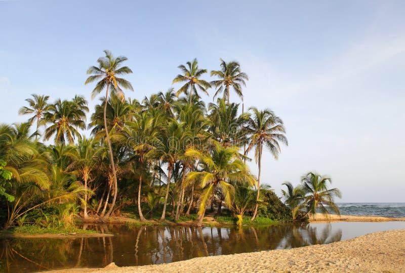 Parque nacional de Tayrona de la playa de Cabo San Juan, Colombia foto de archivo