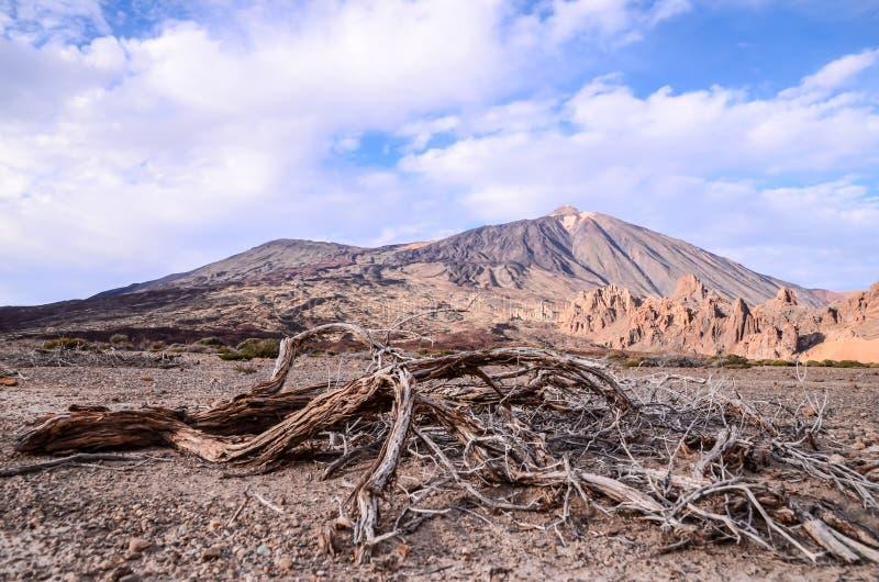 Parque nacional de Teide fotos de archivo