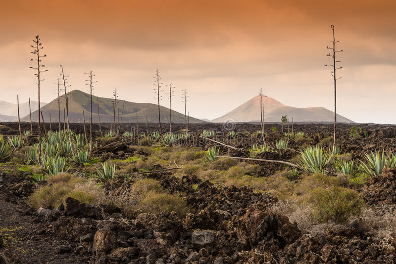Parque nacional de Timanfaya de la tierra volcánica muerta, Lanzarote imagenes de archivo