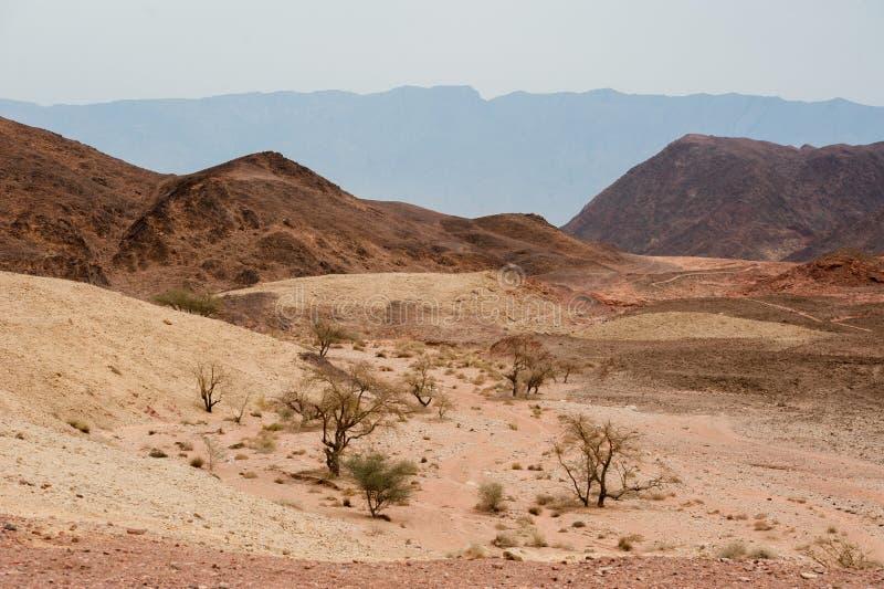Parque nacional de Timna, situado 25 quilômetros ao norte de Eilat, Israel fotografia de stock