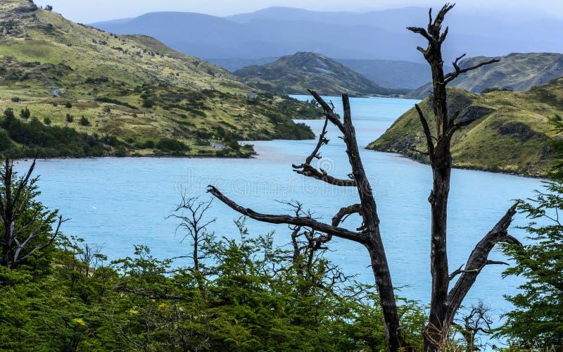 Parque nacional de Torres del Paine, Patagonia, o Chile fotografia de stock