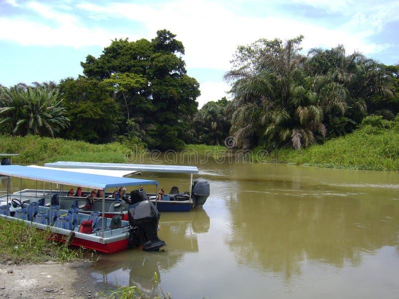 Parque nacional de Tortuguero imagens de stock