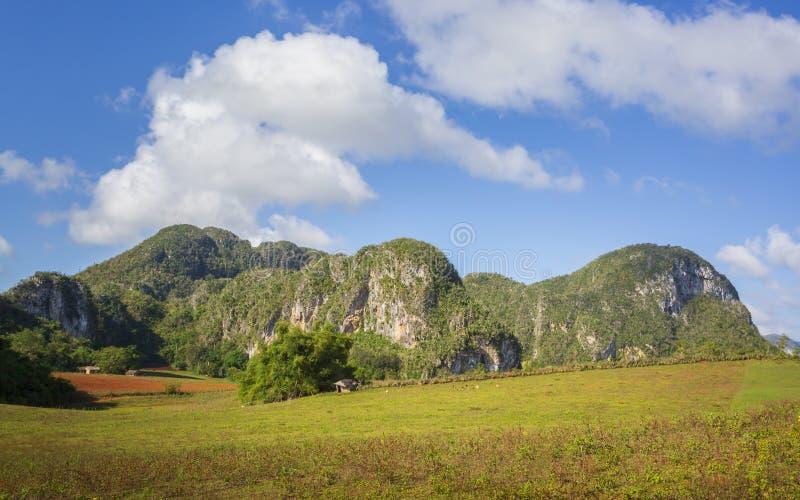 Parque nacional de Vinales, la UNESCO, Pinar del Rio Province, Cuba imagenes de archivo
