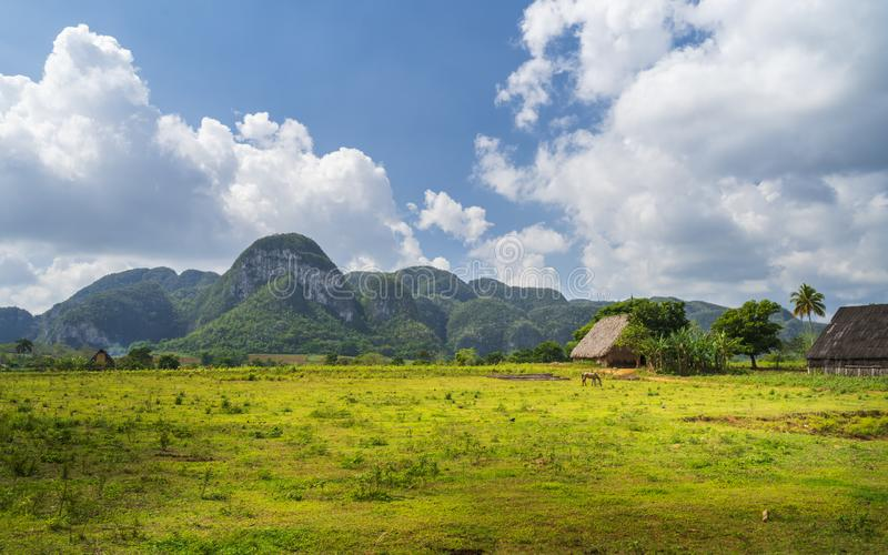 Parque nacional de Vinales, la UNESCO, Pinar del Rio Province, Cuba imágenes de archivo libres de regalías