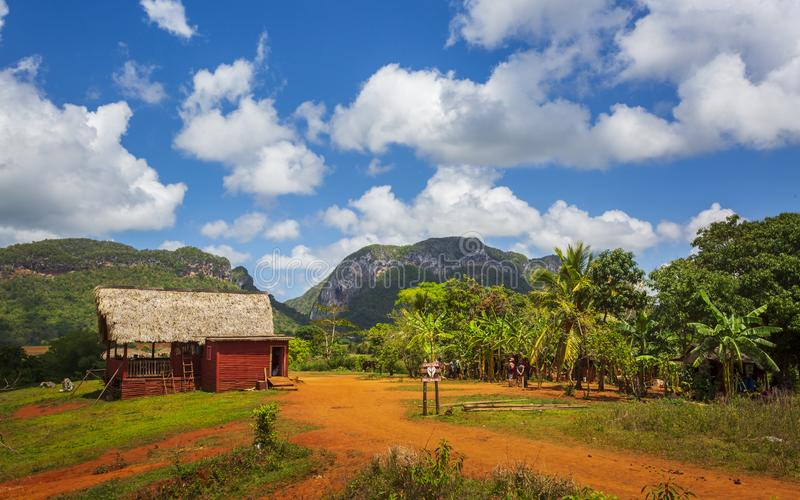 Parque nacional de Vinales, la UNESCO, Pinar del Rio Province, Cuba, las Antillas, el Caribe, America Central fotografía de archivo libre de regalías