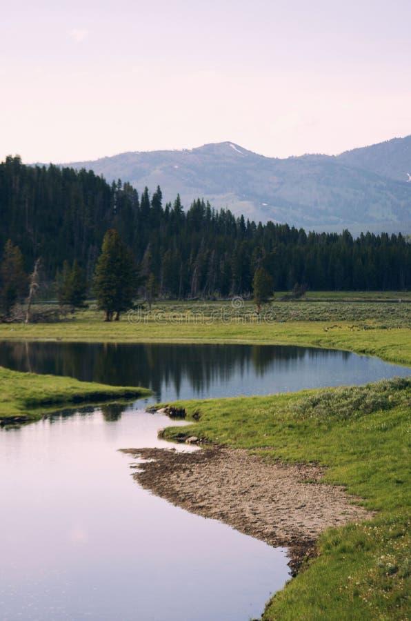 Parque nacional de Yellowstone fotos de archivo