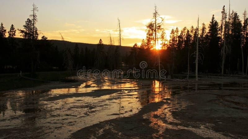 Parque nacional de Yellowstone no por do sol foto de stock royalty free