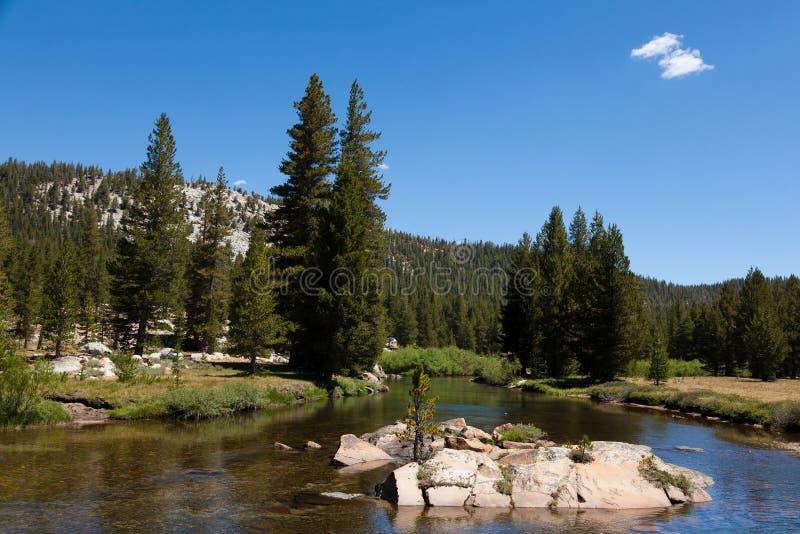 Parque nacional de Yosemite em Califórnia foto de stock royalty free