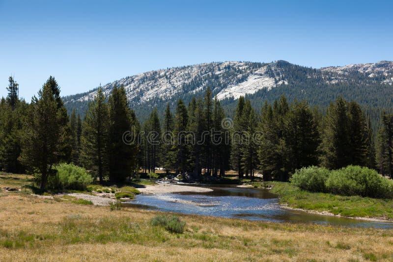 Parque nacional de Yosemite em Califórnia fotografia de stock