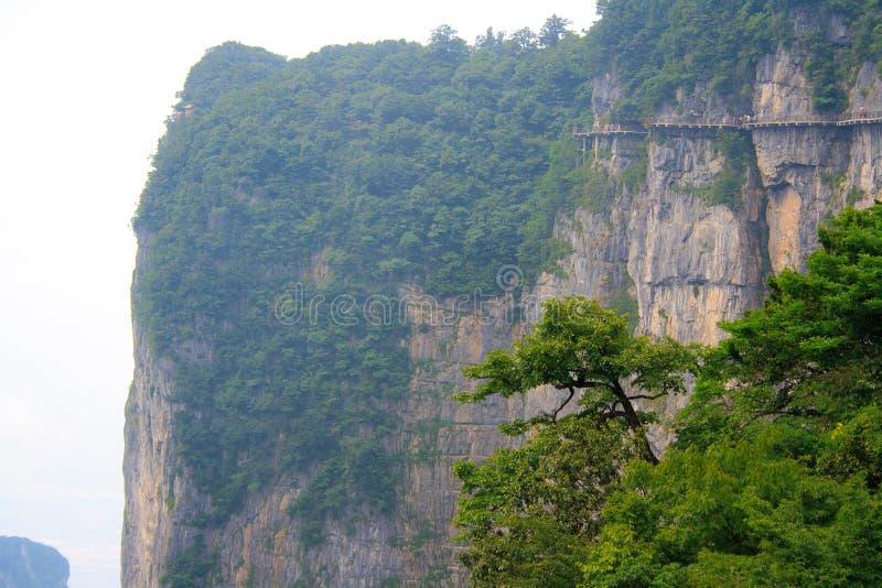 Parque nacional de Zhangjiajie, montañas de Avatar fotos de archivo libres de regalías