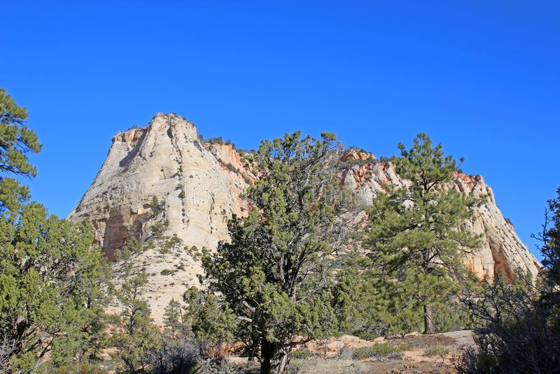 Parque nacional de Zion em Utá, EUA imagens de stock